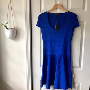 NWT! Ralph Lauren blue fit & flare bodycon dress